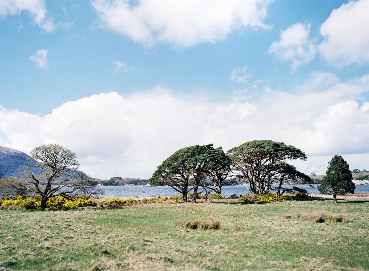 Ireland Wedding Photographer Omalley 0018