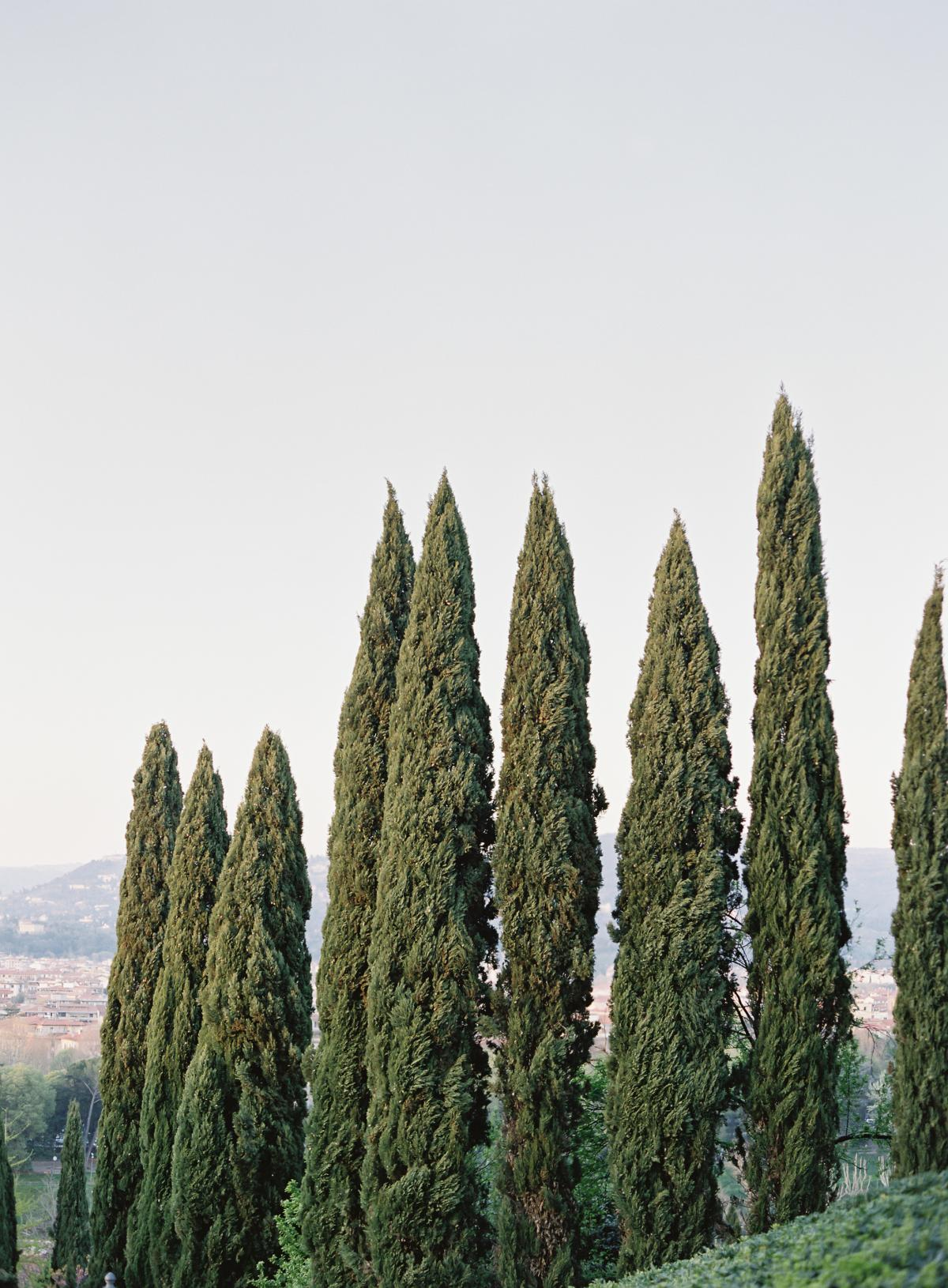 Florence Italy Wedding Villa La Vedetta 0037