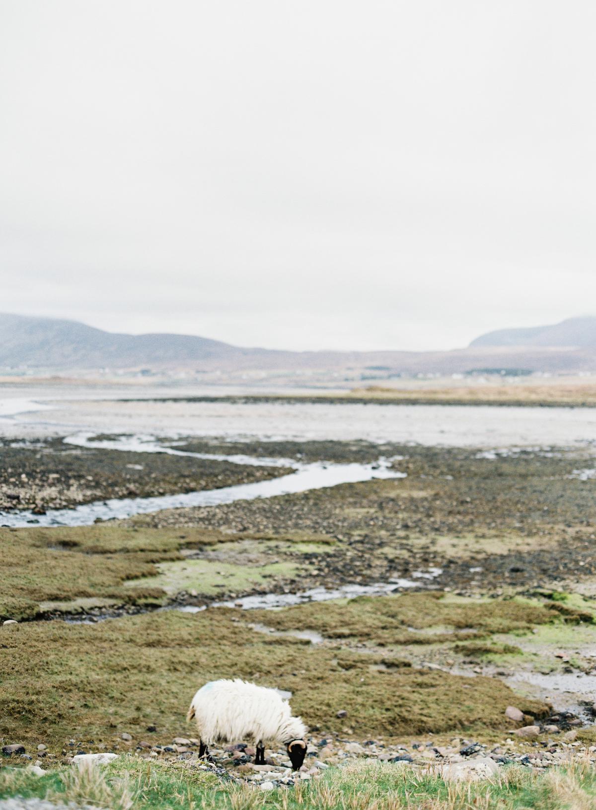 Ireland Wedding Photographer Omalley 0008