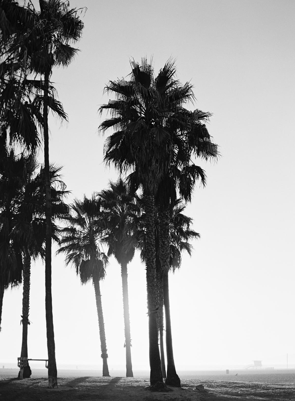 Los Angeles Travel Photos By Omalley Photographers 0003